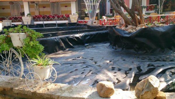 Lợi ích áp dụng hồ trải bạt HPDE trong thiết kế hồ cá Koi tại gia