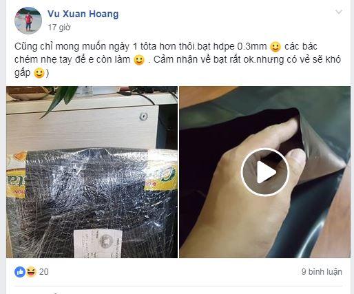 Bể cá koi lót bạt của bác Vũ Xuân Hoàng