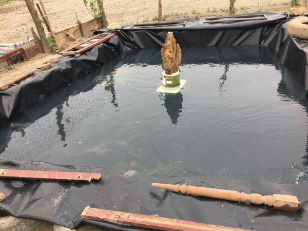 Mô hình nuôi lươn bằng bể lót bạt tại anh Dũng Nhật Tân Hà Nội